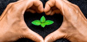 Normativa ISO 14001:2015 Cambios