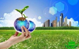 Gestión de la calidad y medio ambiente